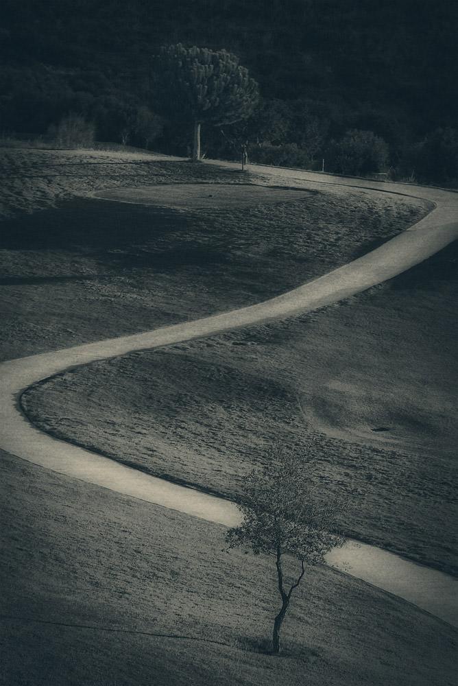 Detaliu teren de golf Spania alb negru portret